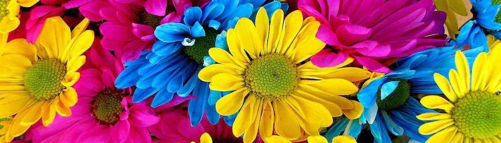 Kolleksjoner - Blomstermotiver